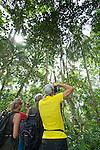 Tourists Photographing A Sloth, Cahuita National Park, Cahuita, Costa Rica