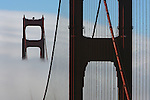 San Francisco summer fog surrounds the Golden Gate Bridge in a rare backdrop looking south from vista point. The Golden Gate Bridge south tower had a backdrop of white fog as seen from vista point north end.