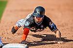 1 March 2017: Miami Marlins infielder J.T. Riddle dives safely back to first during Spring Training action against the Houston Astros at the Ballpark of the Palm Beaches in West Palm Beach, Florida. The Marlins defeated the Astros 9-5 in Grapefruit League play. Mandatory Credit: Ed Wolfstein Photo *** RAW (NEF) Image File Available ***