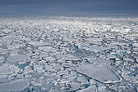 Sea ice, Arctic Ocean. The ice floe's pointy edges are rubbed smooth and round into what is known as pancake ice.