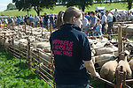 Teen girl Young Farmer. Priddy Sheep Fair Somerset Uk 2009.