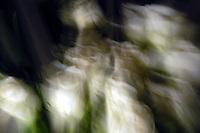 Idee di movimenti, luci e colori. Ideas of movement, light and colours.....