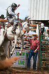 Saddle bronc rider in action at Mt Garnet Rodeo.  Mt Garnet, Queensland, Australia