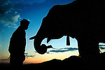 A mahout and his Asian elephant (elephas maximus)at dawn ready for another days work in Hongsa District, Sainyabuli Province, Laos.