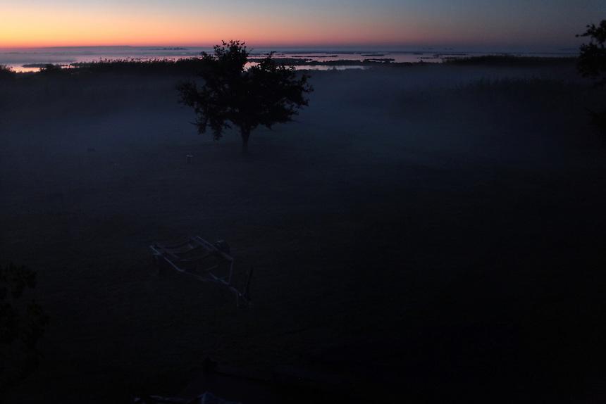 The sun rises over Delacroix Island, LA on November 9, 2010.