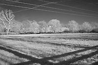 Horse pasture with power lines and shadows in rural Kentucky.  Infrared (IR) photograph by fine art photographer Michael Kloth.