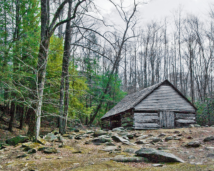 "The barn at the Noah ""Bud"" Ogle Homestead in the Great Smoky Mountains National Park."