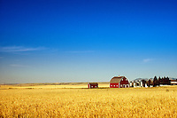Open fields, sky and farm house.