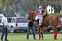 WELLINGTON, FL - MARCH 12:  Facundo Pieres of Orchard Hill.  Scenes from the early rounds of the 26 goal USPA Gold Cup at the International Polo Club, Palm Beach on March 12, 2017 in Wellington, Florida. (Photo by Liz Lamont/Eclipse Sportswire/Getty Images)