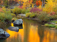 Wenatchee National Forest, Washington:<br /> Fall colors reflecting on the Wenatchee River in Tumwater Canyon