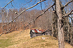 Old farm house, Mitchell County