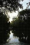 River Scenic