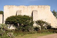 Buttressed wall of ruined building at the 19th century  Mina Santa Brigida mine, Mineral de Pozos, Guanajuato, Mexico