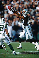 OAKLAND, CA - Jerry Rice of the Oakland Raiders in action making a catch during a game against the New York Jets at the Oakland Coliseum in Oakland, California on January 8, 2002. Photo by Brad Mangin