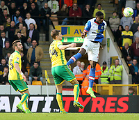 Blackburn Rovers' Lucas Joao scores his sides second goal <br /> <br /> Photographer David Shipman/CameraSport<br /> <br /> The EFL Sky Bet Championship - Norwich City v Blackburn Rovers - Saturday 11th March 2017 - Carrow Road - Norwich<br /> <br /> World Copyright &copy; 2017 CameraSport. All rights reserved. 43 Linden Ave. Countesthorpe. Leicester. England. LE8 5PG - Tel: +44 (0) 116 277 4147 - admin@camerasport.com - www.camerasport.com