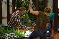 "Two students (Ute Smith and an unidentified male) work to untangle a vine at Orange Coast College's Ornamental Horticulture Club's in-progress installation at the 2012 South Coast Plaza Spring Garden Show in Costa Mesa, CA.  The theme for this year's show is ""healing gardens"", and the OCC team is installing a ""garden for the blind,"" which will be complete with a braille world globe and braille labels.  This picture was taken Tuesday April 25, 2012 at ~11pm, as the team was working frantically to meet their Thursday-morning deadline.  This image was taken at a high ISO using the ambient light in the dim mall, so it's noisier than my typical images (and thus I'd recommend against printing it large)."
