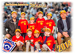 2014 Burlington American Maples