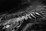 2,000 + year old rice terraces of Ifugao village of Batad in the late afternoon, Luzon, Philippines.  UNESCO has reported that 25 - 30 of the terraces in this region have been abandoned, leaving the irrigation system to fall into ruin.  Also, for the past 30 years, a silent invasion of earth worms have threatened the structure of the terraces themselves.
