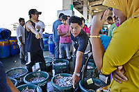 Thai businessmen and women come in the early morning to buy the fresh catch from the Burmese fisherman.
