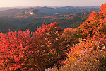 Autumn at Looking Glass Rock, Blue Ridge Parkway
