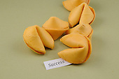 Fortune Cookies with Message