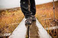Detail of hiking boots walking on wooden planks in rain along Kungsleden trail, Lappland, Sweden
