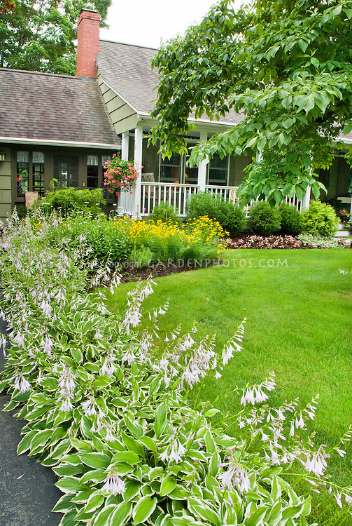 Les Quatre Vents Curved And Circular Steps moreover Variegated Sedge Carex Morrowii  C2 A0ice Dance together with Les Quatre Vents Curved And Circular Steps together with Reader Photos Springtime Longwood further Gardens Cedarholm Garden Bay Inn Maine. on designing hostas