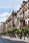 avenida de la consitutucion in sevilla, spain