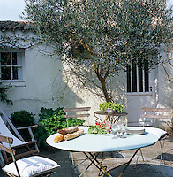 An olive tree stands sentinel over the garden table and chairs in the small courtyard of the house