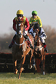 Race winner Golden Gael ridden by Nick Scholfield action during the Sidney Banks Memorial Novices Hurdle - Horse Racing at Huntingdon Racecourse, Cambridgeshire - 23/02/12- MANDATORY CREDIT: Gavin Ellis/TGSPHOTO - Self billing applies where appropriate - 0845 094 6026 - contact@tgsphoto.co.uk - NO UNPAID USE.