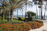 Spain, San Pedro de Alcantara, promenade, paseo maritime, shore, sea, Mediterranean, November, 2015, 201511211832<br /> <br /> Copyright Image from Victor Patterson, 54 Dorchester Park, Belfast, UK, BT9 6RJ<br /> <br /> t1: +44 28 9066 1296 (from Rep of Ireland 048 90661296)<br /> t2: +44 28 9002 2446 (from Rep of Ireland 048 90022446)<br /> m: +44 7802 353836<br /> <br /> e1: victorpatterson@me.com<br /> e2: victorpatterson@gmail.com<br /> <br /> www.victorpatterson.com<br /> <br /> IMPORTANT: Please see my Terms and Conditions of Use at www.victorpatterson.com