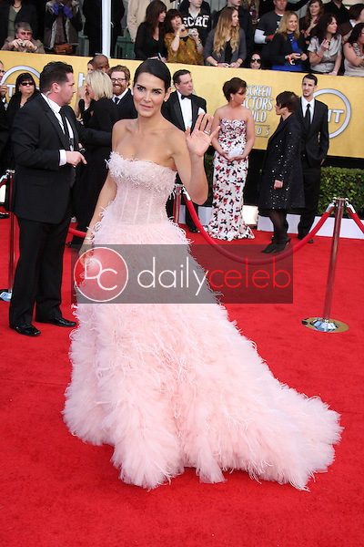 LOS ANGELES - JAN 30:  Angie Harmon arrives at the 2011 Screen Actors Guild Awards  at Shrine Auditorium on January 30, 2011 in Los Angeles, CA