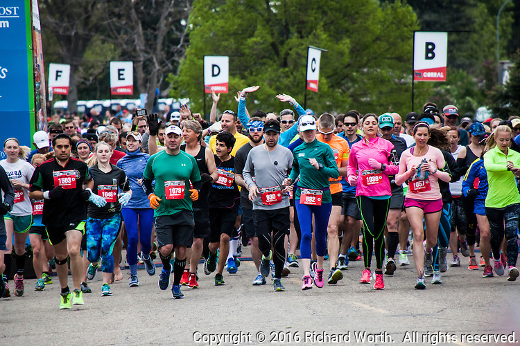 One of the multiple waves of runners as they begin their 13.1 mile half marathon event at the Colfax Marathon, 2016