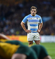 Nicolas Sanchez of Argentina looks on. Rugby World Cup Semi Final between Argentina v Australia on October 25, 2015 at Twickenham Stadium in London, England. Photo by: Patrick Khachfe / Onside Images
