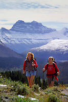 Skyline Trail, Jasper National Park, Alberta, Canada, July 2006.  On the way to Wilcox Pass. Trekking the Skyline Trail takes you over mountain ridges and through green alpine meadows offering spectaculair mountain landscapes and lots of wildlife. Photo by Frits Meyst/Adventure4ever.com.