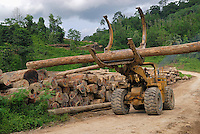 Rainforest logging near the Danum Valley Conservation Area, Sabah, Borneo, Malaysia