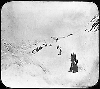 BNPS.co.uk (01202 558833)<br /> Pic: PenzanceAuctions/BNPS<br /> <br /> Dog teams attempting to reach the Pole. <br /> <br /> Incredibly rare glass slides depicting the British expedition to the North Pole in 1875 have been found 140 years later.<br /> <br /> The remarkable images from the early days of photography depict the brave men and their Inuit guides who endured sub-zero temperatures to try to become the first to reach the pole in 1875.<br /> <br /> Photographers Thomas Mitchell and George White went on the failed expedition and now 42 of their glass slides have been found in a box during a house clearance in Cornwall.