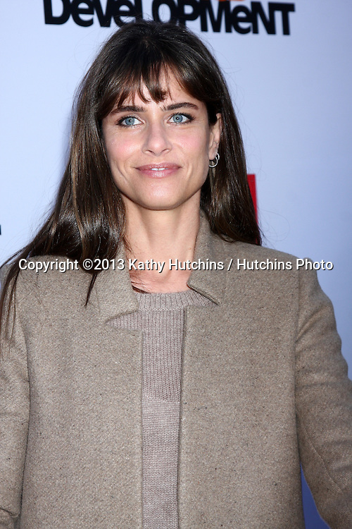 "LOS ANGELES - APR 29:  Amanda Peet arrives at the ""Arrested Development"" Los Angeles Premiere at the Chinese Theater on April 29, 2013 in Los Angeles, CA"