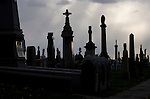 Calvary Cemetery in Queens. Nov. 18, 2008. Robert Caplin For The New York Times