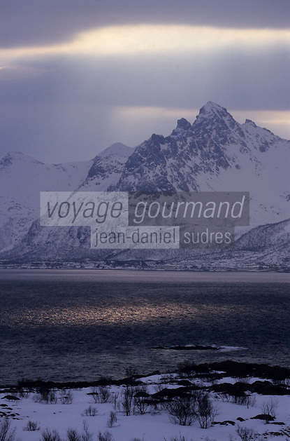 Europe/Norvège/Iles Lofoten/Env de Valberg : Lumière sur le fjord