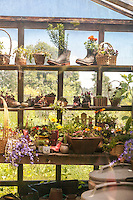 A variety of original plant containers on a shelf in a greenhouse, including old shoes and boots.