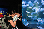 San Francisco: Family looking at jellies at Aquarium of the Bay at Pier 39.  Photo copyright Lee Foster. Photo # casanf104087.