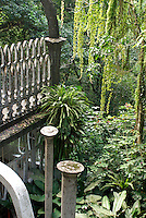 Cement structures at Las Pozas, the surrealistic sculpture garden created by Edward James  near Xilitla, Mexico