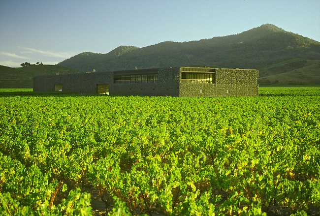 Dominus Estate winery near Yountville, CA