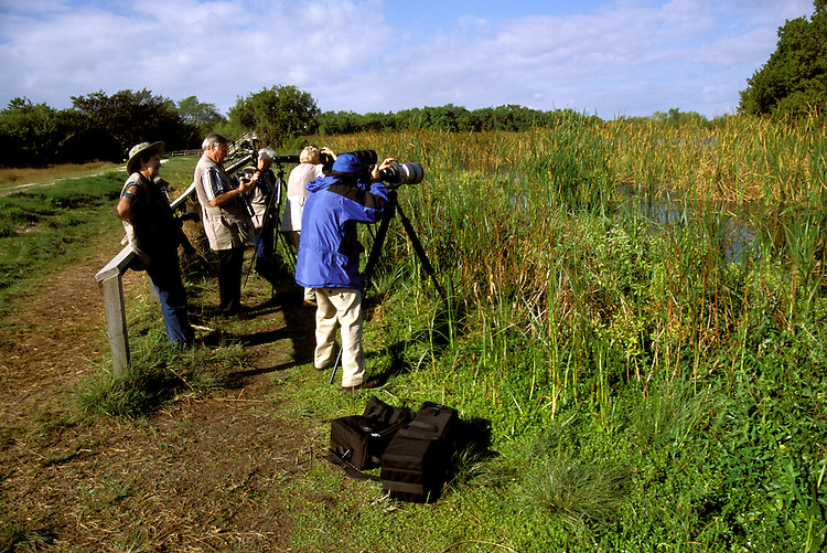FL: Florida Everglades National Park,.Birders, birdwatching at Eco Pond..Photo Copyright: Lee Foster, lee@fostertravel.com, www.fostertravel.com, (510) 549-2202.Image: flever233