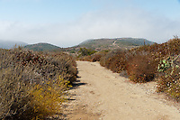 Looking back towards the ocean from Crystal Cove State Park's Lower Moro Campground, this shows the trail hiking along the ridgeline of the hills.