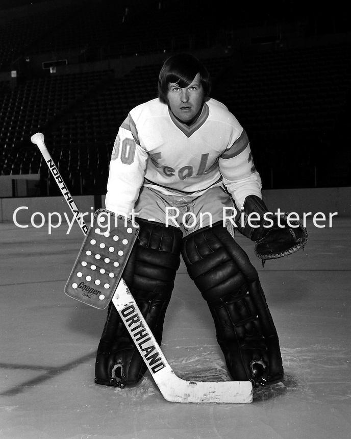 "California Golden Seal goalie Gary Simmons ""The cobra""  (1974 photo/Ron Riesterer)"