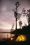 Fly fishing in Lake Brunner. Tent illuminated. Westland Region. New Zealand. Vertical format.