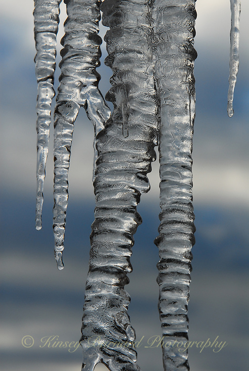 &quot;ICICLES-1&quot;<br /> <br /> Winter icicles that form any place they can find to hang, even eaves create very imaginative works of natural art. One is likely to find these amazing designs most anywhere in a Montana winter.