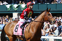 LEXINGTON, KY - April 08, 2017, #8 A.P. Indian and jockey Joe Bravo return after finishing 2nd in the Grade 3 Commonwealth $250,000 at Keeneland Race Course.  Lexington, Kentucky. (Photo by Candice Chavez/Eclipse Sportswire/Getty Images)